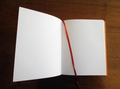 blank-book-1024x768