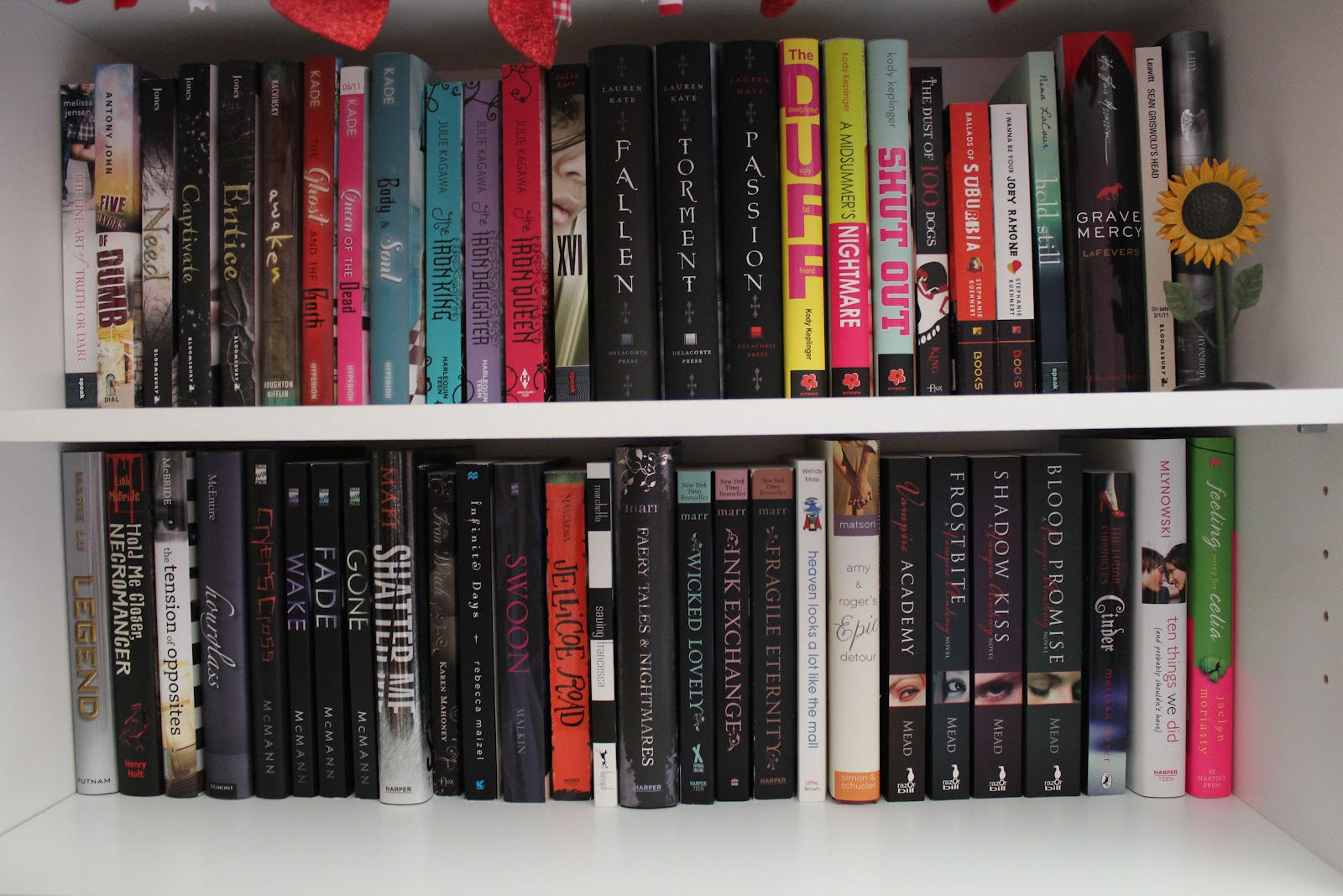 Bookshelf 2012 019